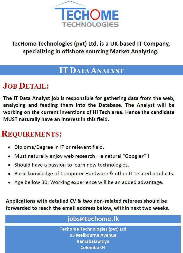 IT Data Analyst