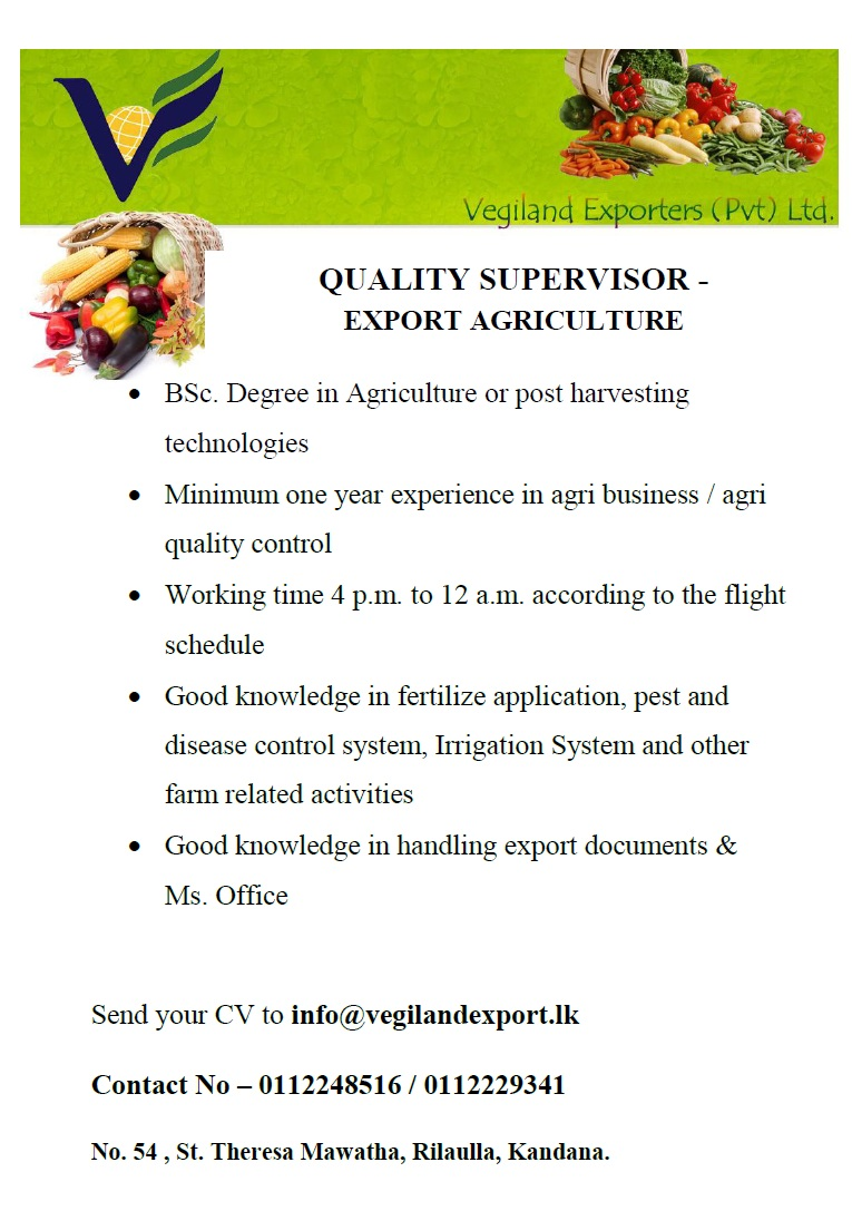 Quality Supervisor - Export Agriculture